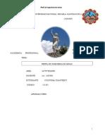 Perfil Minas