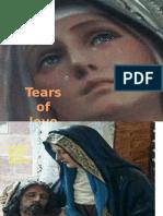 Presentation1 Mary Sorrows