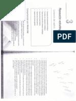 Capítulo 3 Planeación Estratégica