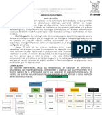 1 Lesiones Elementales, Prurito y Psicodermatosis