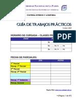 Guia Practica Control Interno y Auditoria v.2015