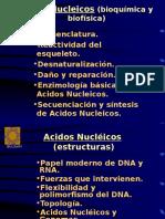 ANucleicos.ppt