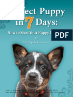 Potty Training From Perfect Pup