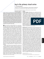 Roelfsema - Subtask Sequencing in the Primary Visual Cortex