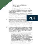 Codificación Guzmán Resumen