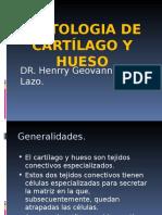 3 Tejido Oseo y Cartilaginoso