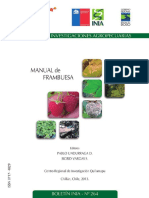 MANUAL DE FRAMBUESA.pdf