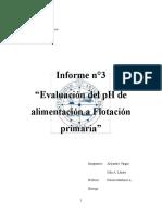 Informe Flotacion-evaluacion de Ph