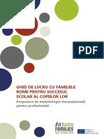 guide_roma_families_ru.pdf