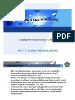 plugin-P_XI_Boiling_Condensation_.pdf