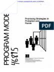 Promising Strategist in Probation and Parole