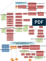 pathophysiology  Community aquired Pneumonia and Anemia