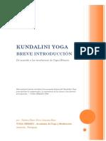Guia Principi Antes Yoga Urbano