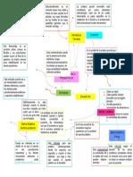 Componentes de La P P R