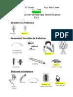 State Road Macro Invertebrate Data