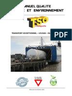 11_manuel_qse_2015.pdf
