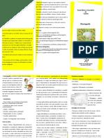Disortografia.pdf