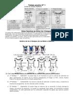 funcionamiento del motor de 4 iempos.docx