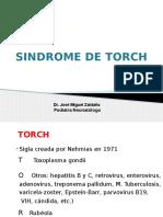 8. TORCH.pptx