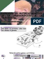 Transcripción Traducción Celular
