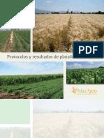 Libro Protocolos y Resultados