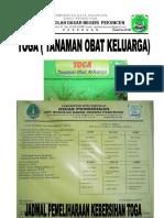 TANAMAN OBAT KELUARGA (1).doc