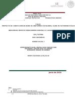 Proyecto y Plan de Negocios de Fabricación de Hamacas