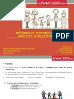 Exposicion de La Familia en La Salud y La Salud Mental. 090816pptx