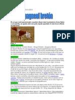 EpagnolBretonInfoMartiM_100510