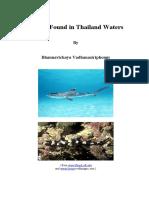 Sharks in Thai Waters.pdf