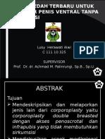 analgesik anastesia