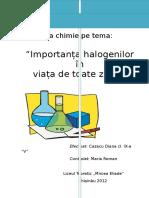 Importanța halogenilor  în viața de toate zilele