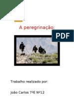 Peregrinação-João(7ºE)
