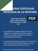informe de próstata rmx