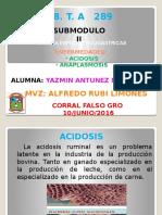 ACIDOSIS Y ANAPLLASMOSIS (YAZMIN).pptx