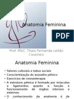 Anatomia Feminina.pptx