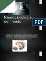 Neuropsicologia Del Miedo