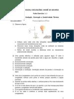 Ficha de Exercícios de Física e Química A