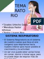 EL SISTEMA RESPIRATORIO 5º.ppt