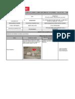 SGI-FR-SSM-050-V02 Inspecciones SSTMA Hasta 18-03-2016 -1