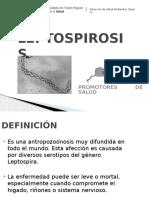 Leptospirosis Paco