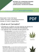 Cannabis y Cannabinoides