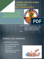 MALFORMACIONES-CONGENITAS-DEL-APARATO-DIGESTIVO.ppt