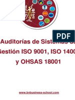 Auditorias de Sistemas de Gestion