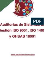 Auditorias de Sistemas de Gestion