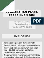 PPH-mega