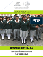 Consejos Técnicos Escolares, Secundaria Fase Intensiva 2016