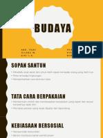 PKN - BUDAYA