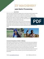 Ethiopia Garlic Processing
