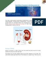 Kidney Transplant in Delhi, Kidney Stone Treatment in Delhi